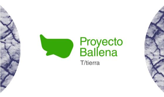 Proyecto ballena